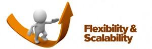Flexibility-Scalability